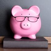 Sparschwein mit Brille auf Buch