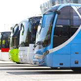 Mehrere, verschiedenfarbige (Fern-)Busse hintereinander