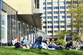 Studierende auf dem Campus (Wiese)