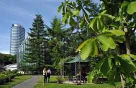 Botanischer Garten der FSU Jena (Gewächshäuser im Hintergrund)