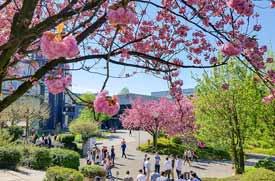 Campus der Uni Paderborn im Frühling