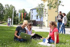 Studierende sitzen auf Wiese