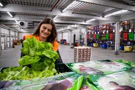Frau in Lagerhalle packt Salat