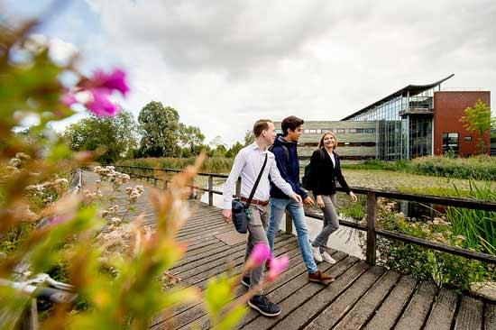 Studierende laufen über Campus