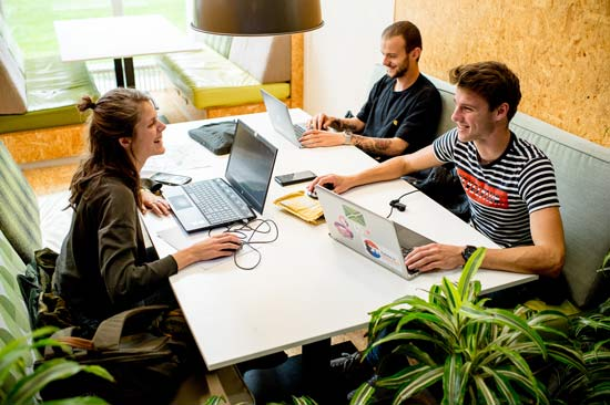 Studierende arbeiten an Laptops