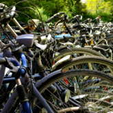 Lange Reihe von nebeneinanderstehenden Fahrrädern