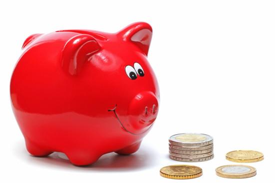 Rotes Sparschweinchen schnuppert Geld