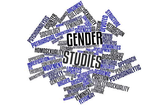 "Wortwolke zum Thema ""Gender Studies"""