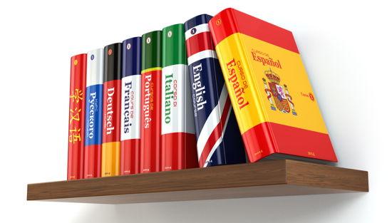 Regelbrett mit Büchern verschiedener Sprachen (Buchrücken jeweils mit Landesflagge)
