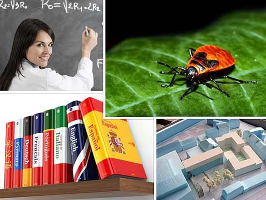 Collage aus Bildern verschiedener Studiengänge