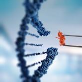 DNA-Moleküldesign mit weiblicher Hand, die eine Pinzette hält.