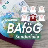 Pass, Globus und Geld auf einer Holzlatte als Hintergrund überschrieben mit Auslands-BAföG + weiße Schafe mit einem braunen